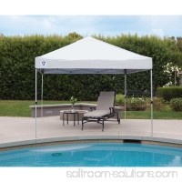 Z-Shade 10' x 10' Peak Canopy Straight Leg Instant Shade Tent Portable Shelter