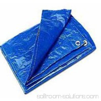 Cwc Regular-Duty Tarp, Blue   554603143